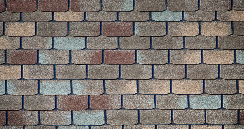 10 Fun Facts About Shingle Roofs Alvarado Roofing
